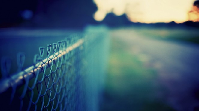 free fence photography
