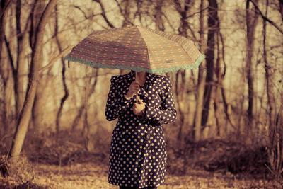 Umbrella color photo